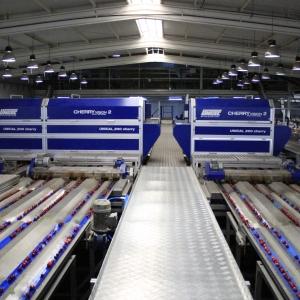 Máquina de Cerezas UNITEC con tecnología Cherry Vision 2